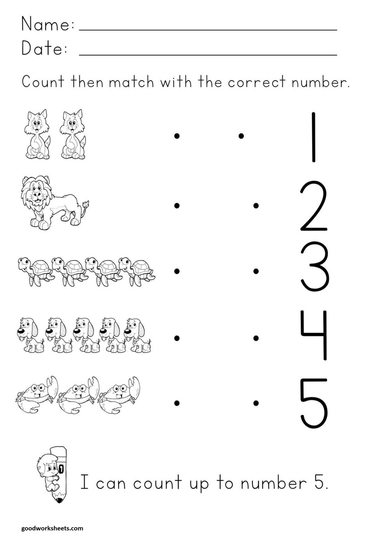 Number Concepts Worksheets