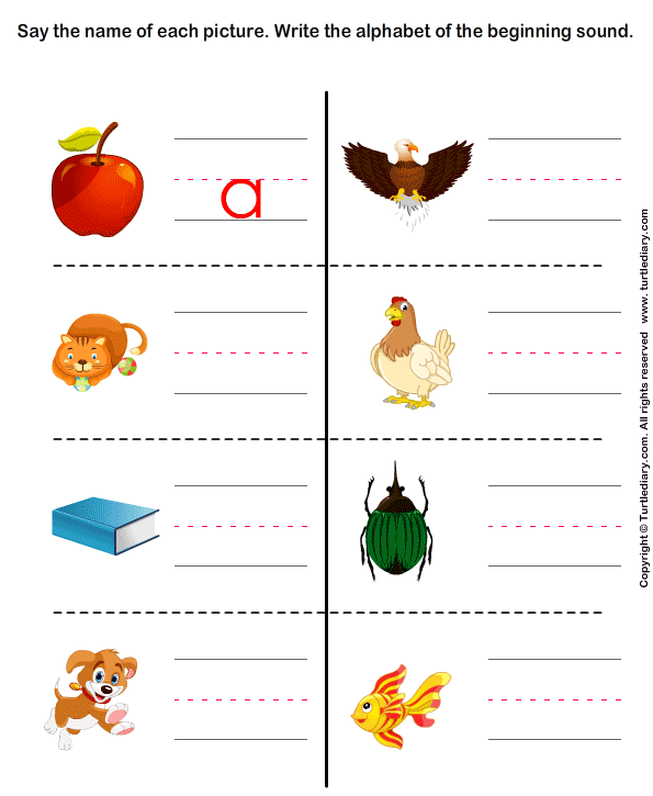 Write The Letter Of Beginning Sound Worksheet